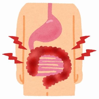 プロポリスの抗炎症作用