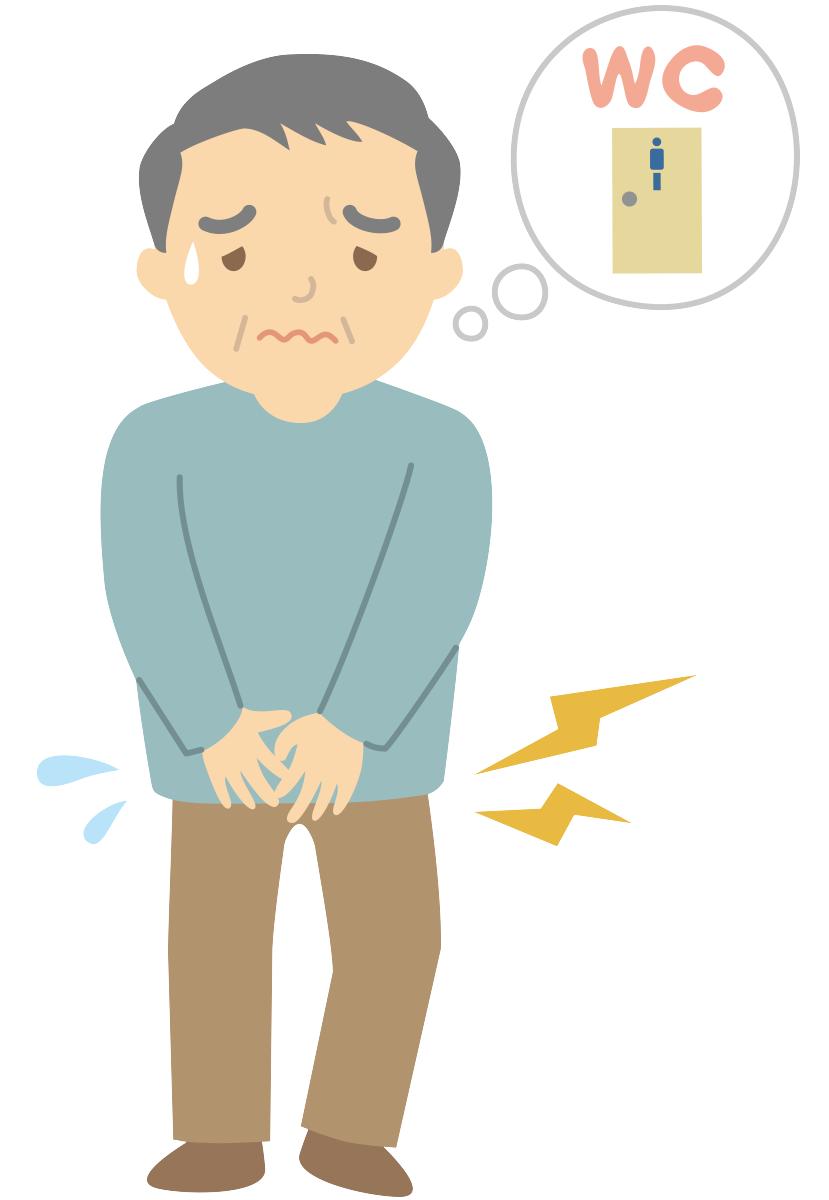 頻尿にプロポリスが効果を発揮?|プロポリスと泌尿器の悩み
