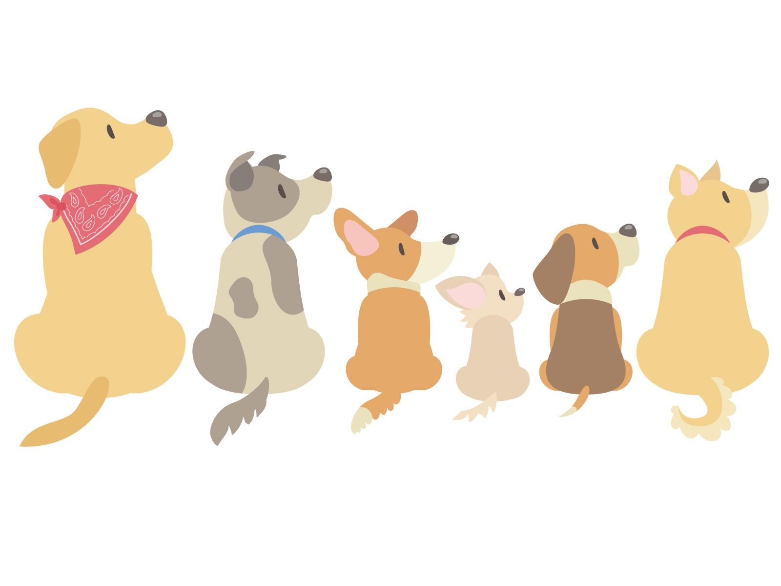 犬はプロポリスで健康になれる